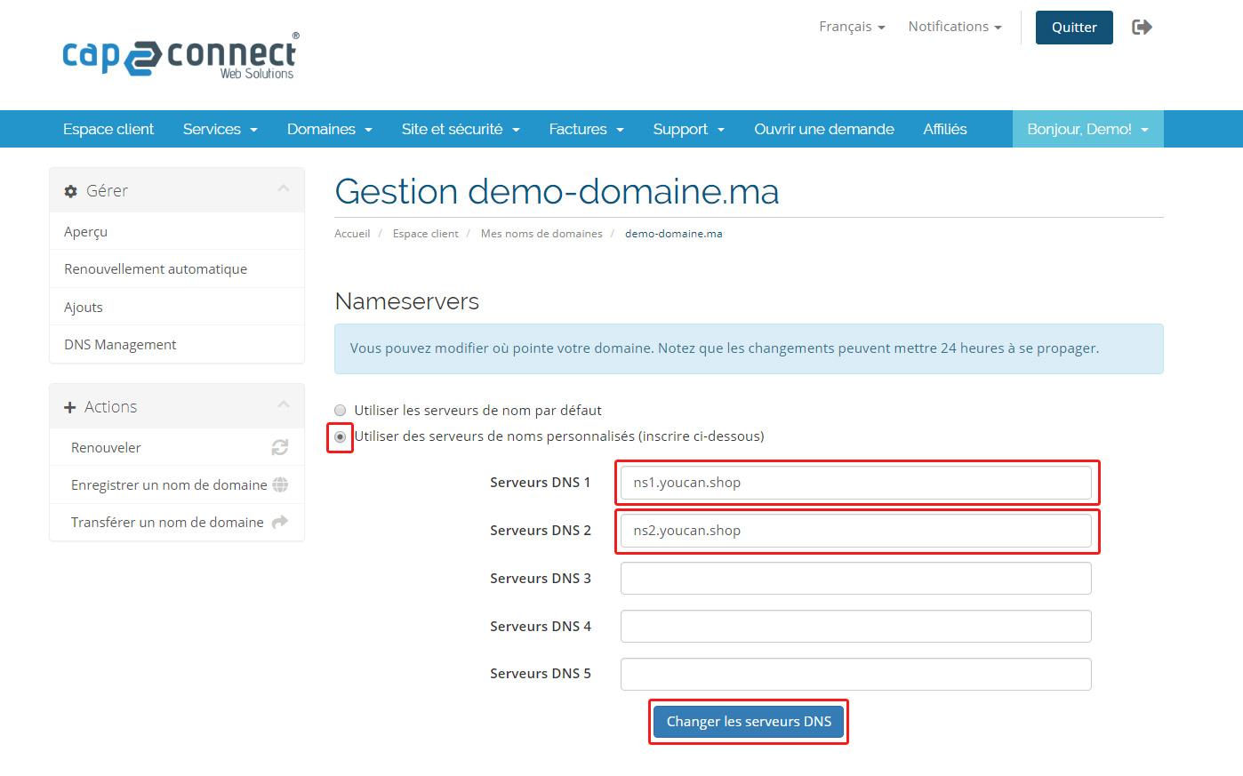 changement DNS youcan.shop