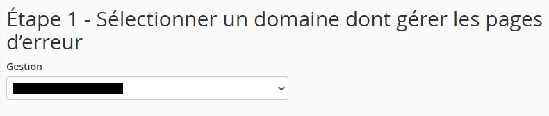 Nom de domaine page d'erreur